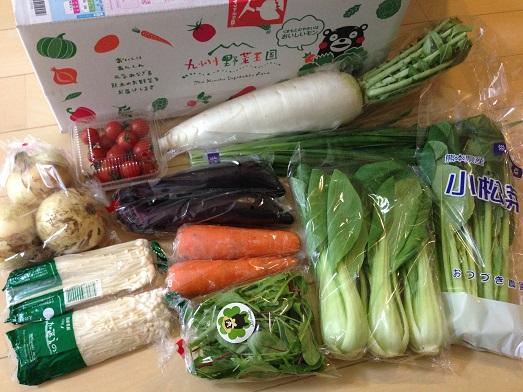 九州野菜王国の野菜達が届きました