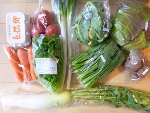 ベジプールの野菜のセットをお取り寄せしました