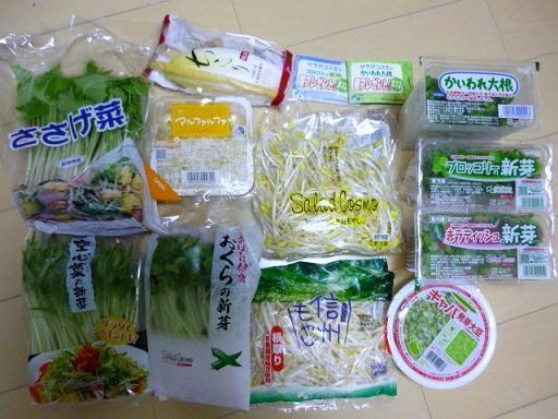 2011年のスプラウト野菜セット