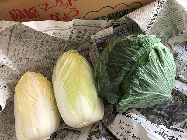 小さい白菜2つとキャベツ