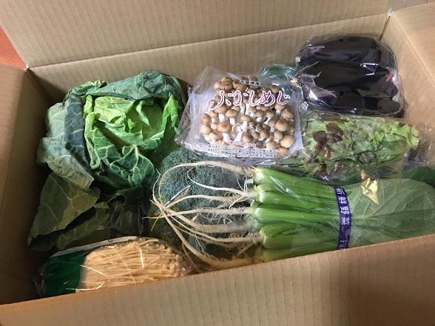 館山のいすえ総合卸の野菜セット