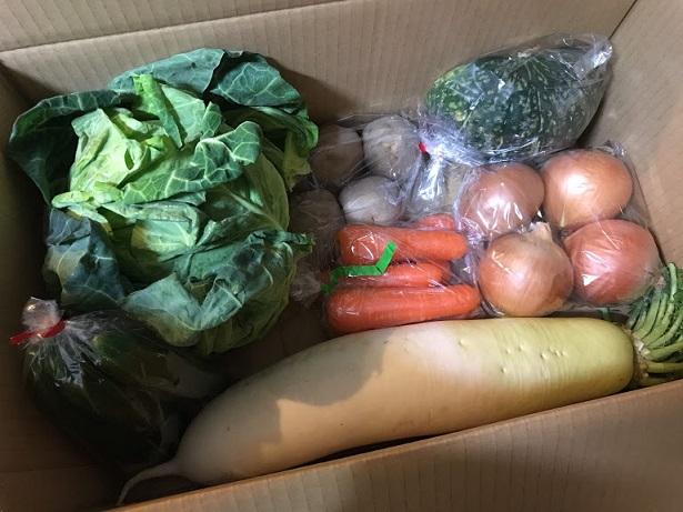 バランスのいい野菜たち