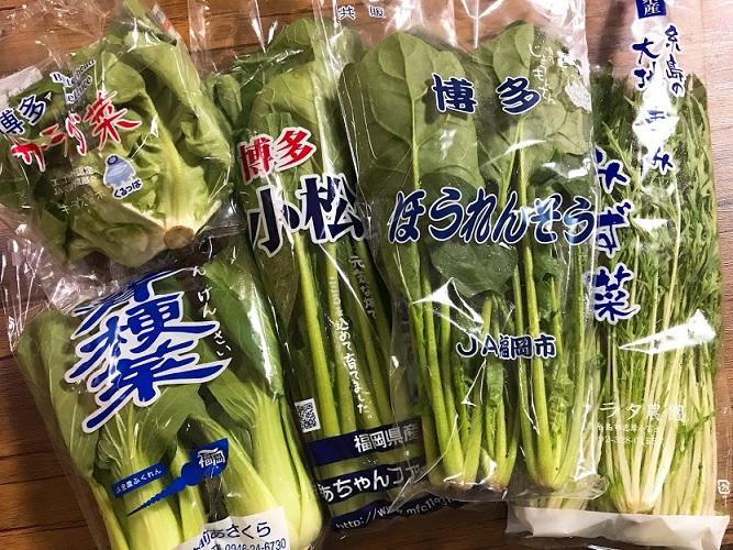 葉野菜が多いのは確か